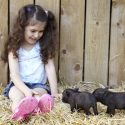 Young girl with baby wild boars