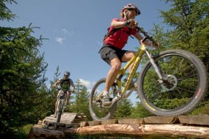 gisburn forest mountain bike trail 1