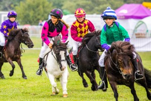 RLAS Horses